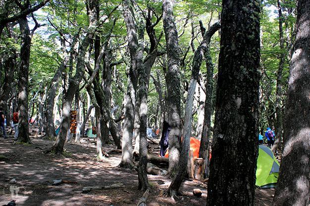 Etapa 1: Campamento Poicenot