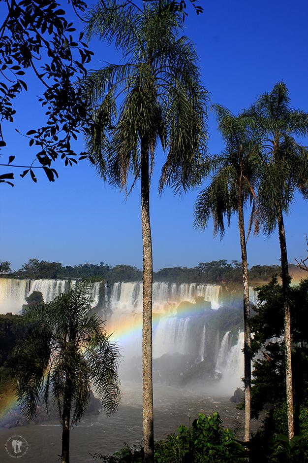 Cataratas de Iguazú IV