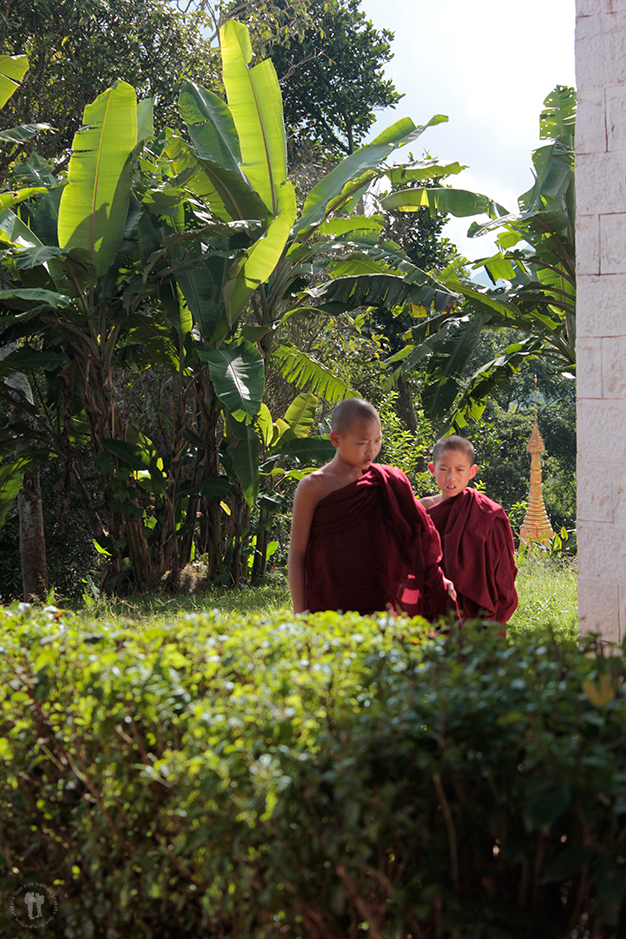 Pequeños monjes budistas