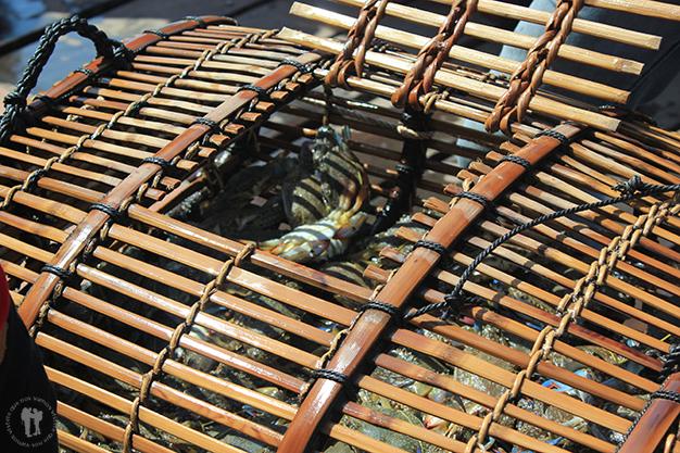 Cesta de cangrejos