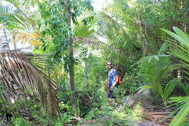 Recorriendo la isla por sus senderos