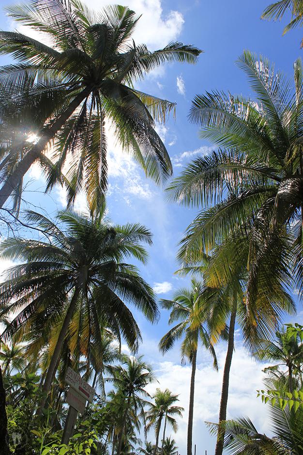 Dirección Sainuan Beach