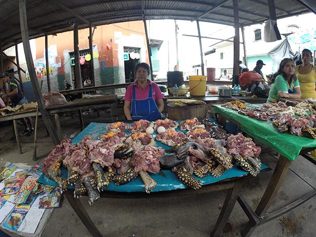 Mercado de Belén. Puesto de carne de tortuga