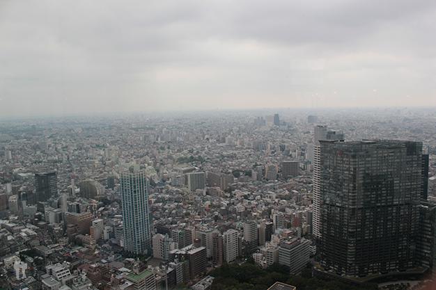 Vistas de altura desde el TMGC