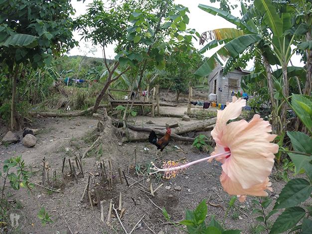 Barangay Asluman