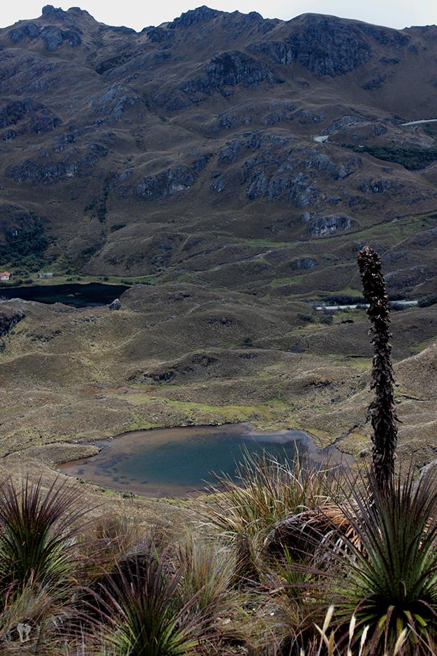 Vistas de las lagunas