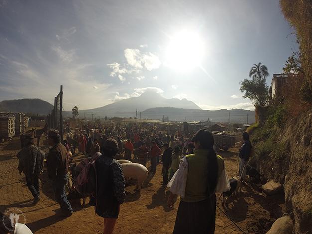 Feria de Animales con el volcán Imbabura al fondo