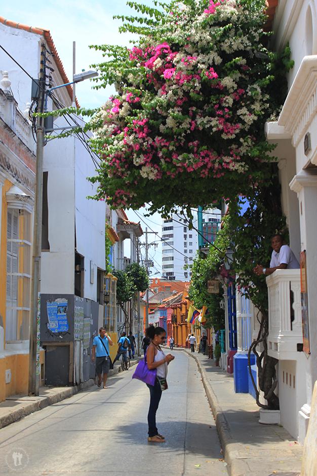 Vida en las calles del casco antiguo