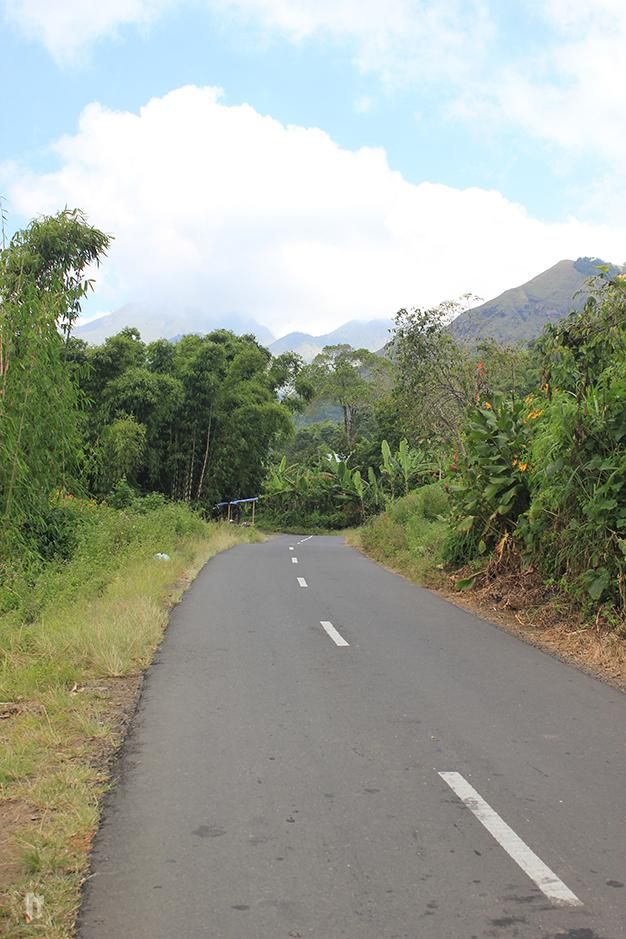 Adentrándonos en el Parque Nacional de Rinjani