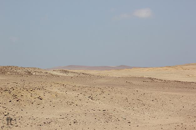 Reserva Nacional de Paracas. Puro desierto