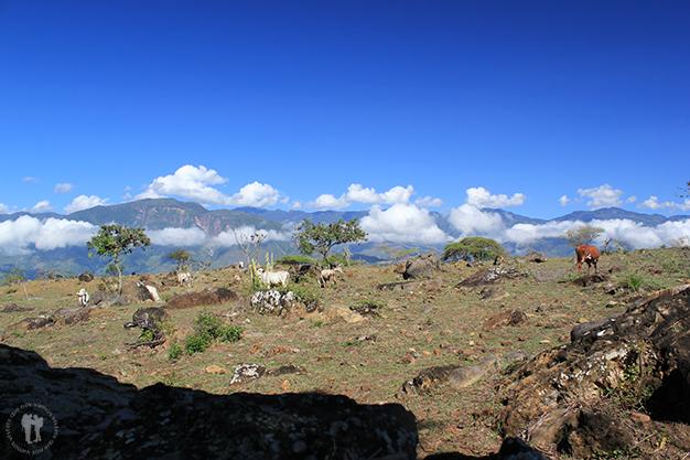 De camino al pueblo de Cabrera