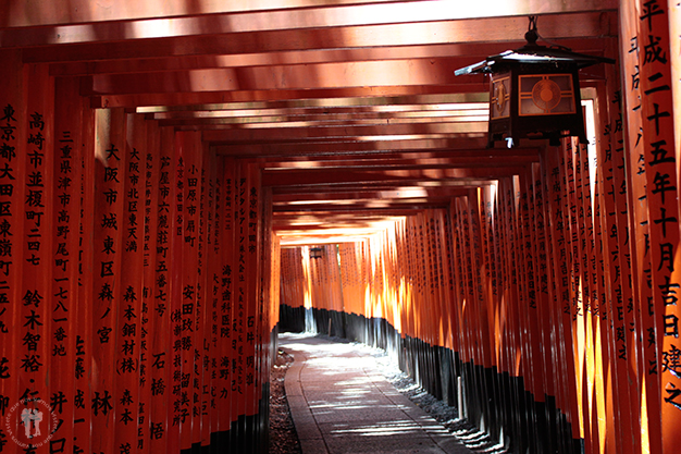 Miles de toriis