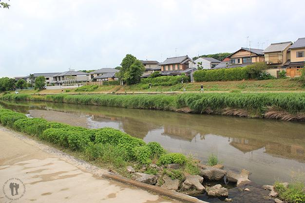 Paseando al lado del río
