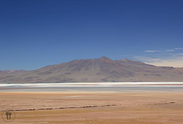 Paisajes del altiplano