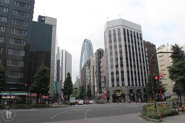 Tokyo nos despide de Japón