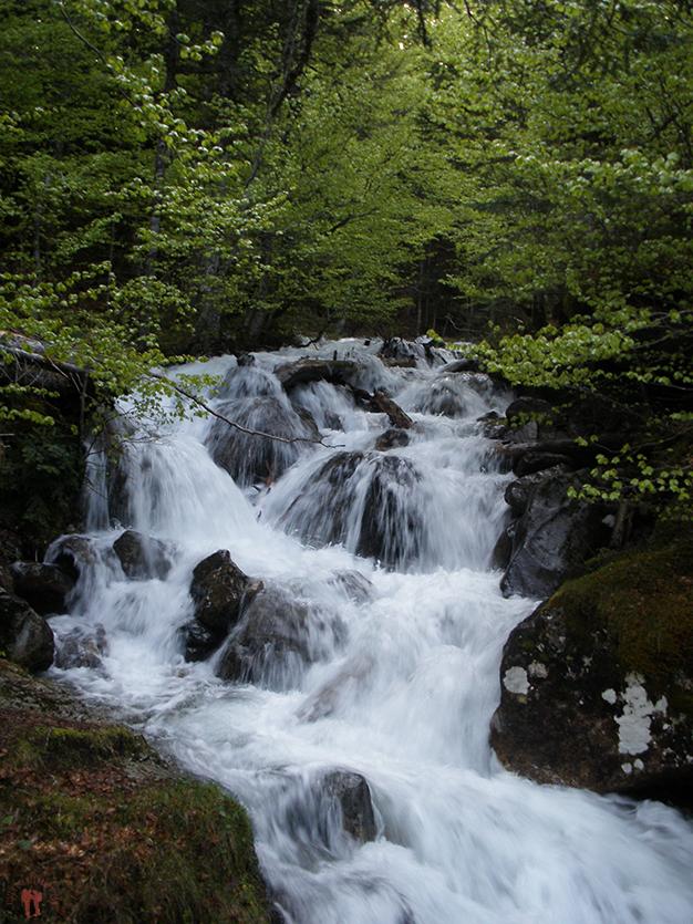 El agua baja con fuerza