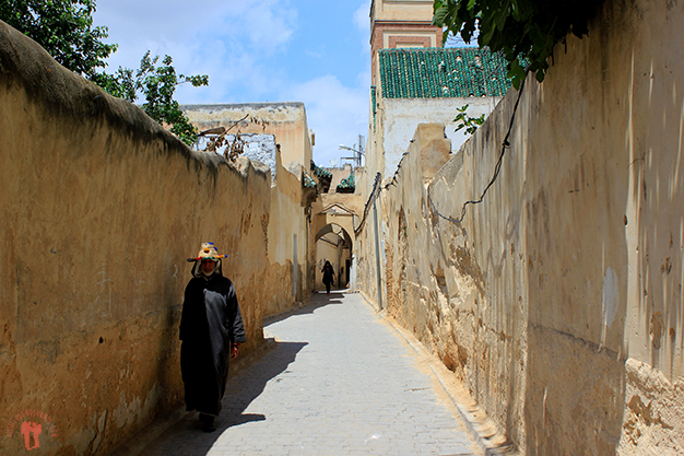 Medina de Fez