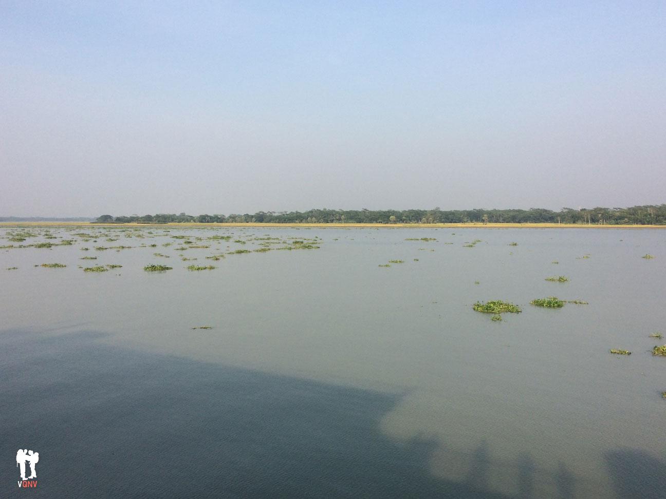 Delta de Bangladesh