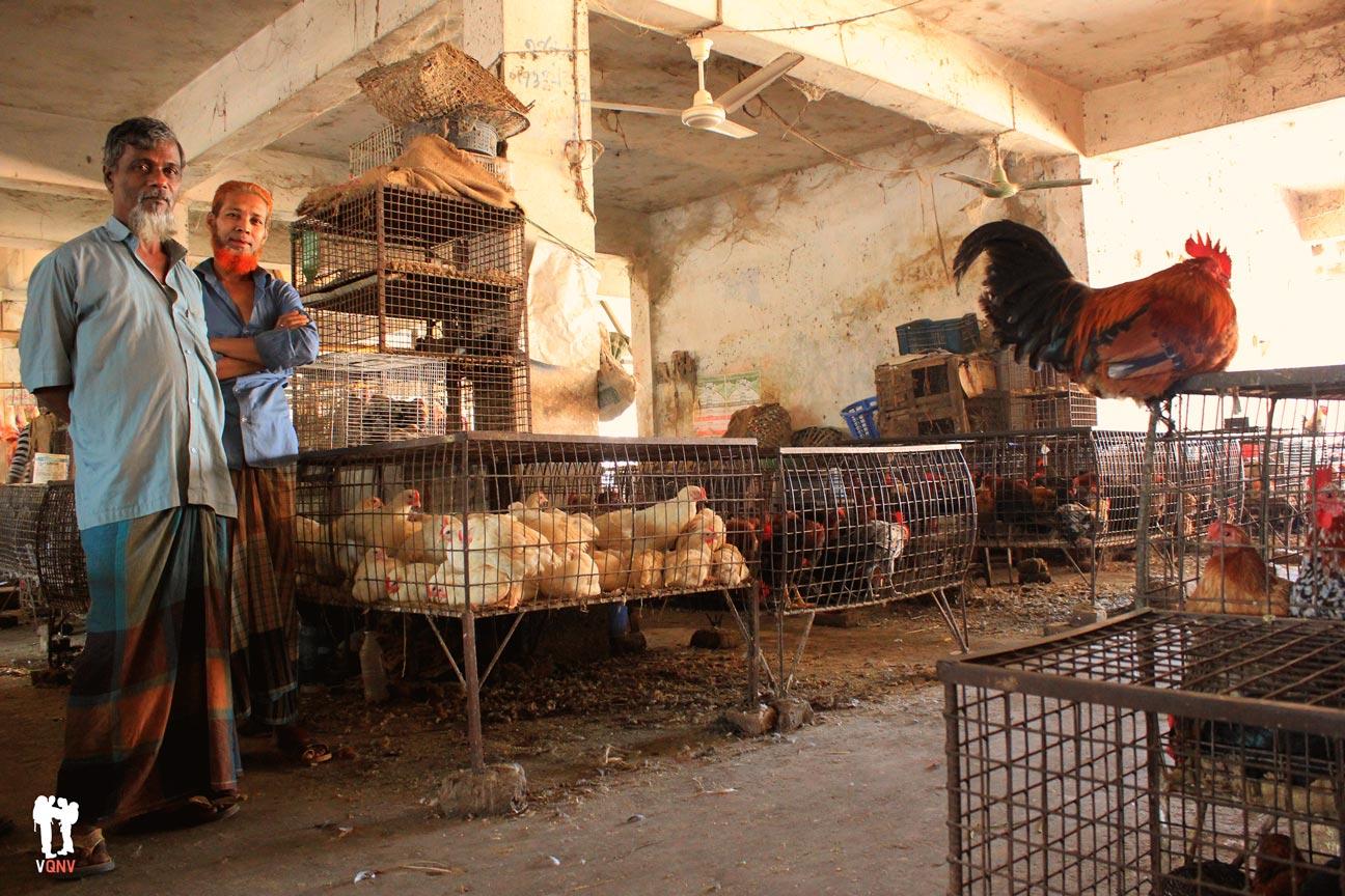 Vendedores de gallinas