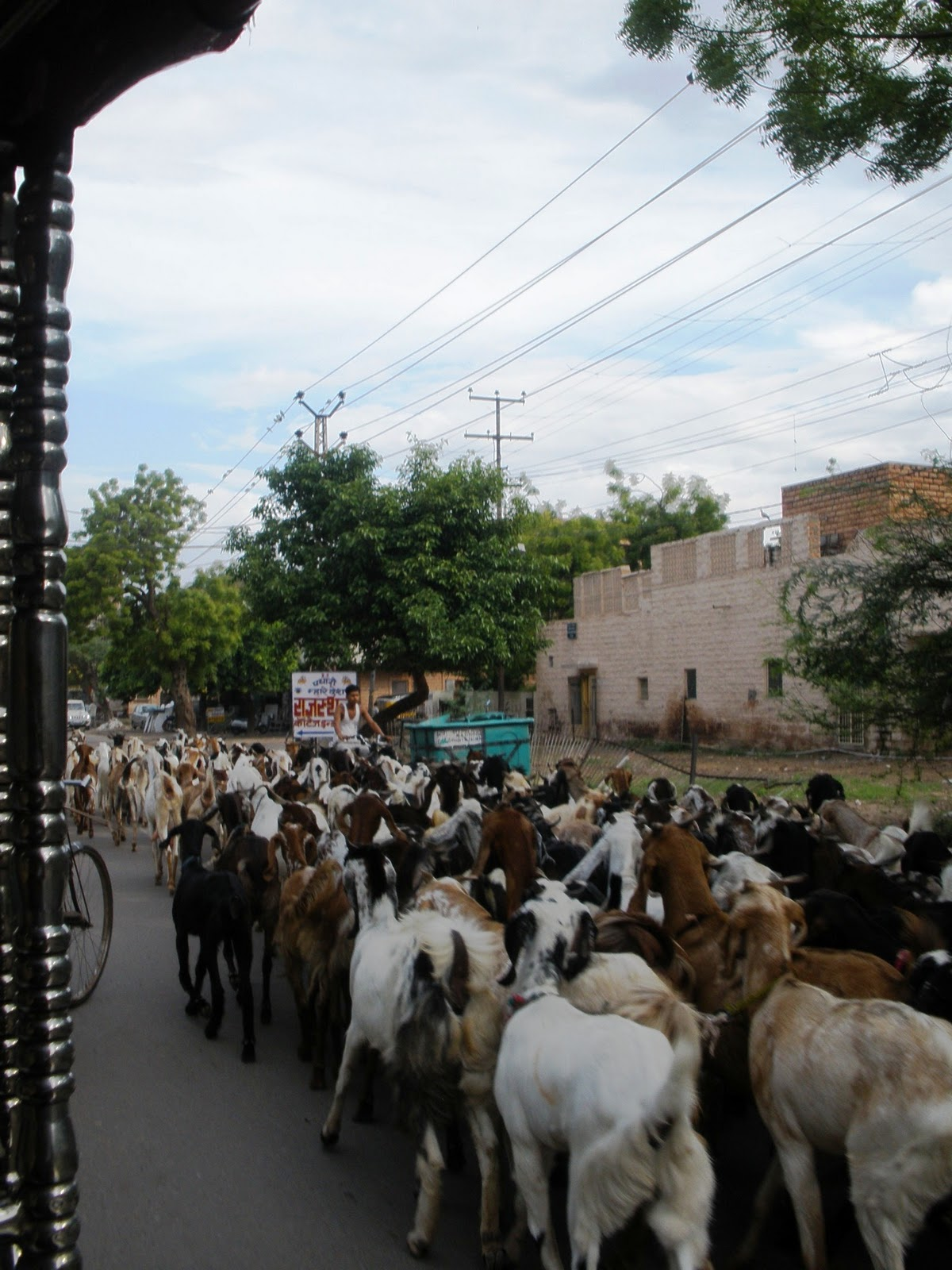 Dentro de un rickshaw